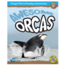 Awesome Orcas 6-Pack
