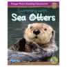 Swimming with Sea Otters 6-Pack