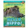 Hello Hippo! 6-Pack