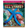 What's So Super About Sea Stars 6-Pack