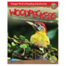 Woodpeckers 6-Pack